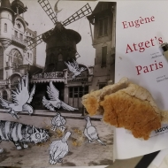 Henri rescue Minou, s'il vous plait!  She thinks she's a pidgeon stuck in a book of Paris photos.  Merde, find her and get her out!