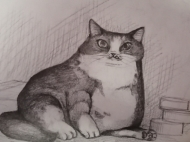 Fat Cat (2021), Pencil on Paper, 8 x 10 inches, $100